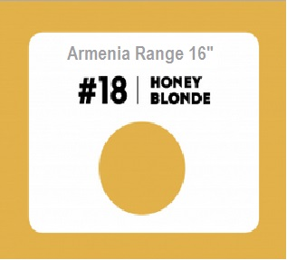 #18 Honey Blonde – 16″ - 1 gram – Nano (25 strands per packet)