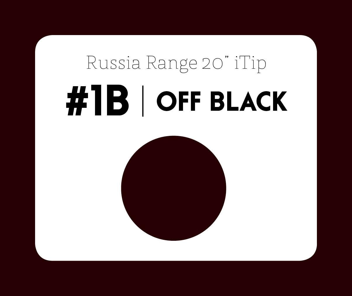 #1b Off black – 20