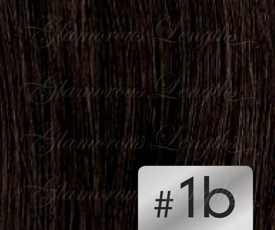 #1b Off Black – 18