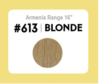 #613 Blonde – 16″- 1 gram – Nano (25 strands per packet)