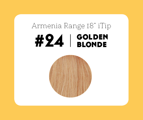#24 Golden Blonde – 18″- 1 gram – iTip - Armenia Range