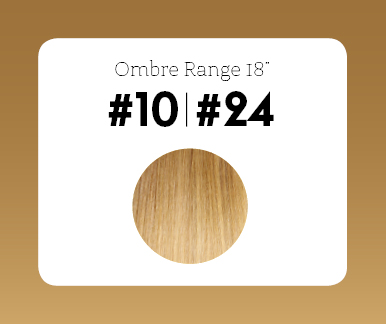 #10T24 Medium Golden Brown/Golden Blonde – 18