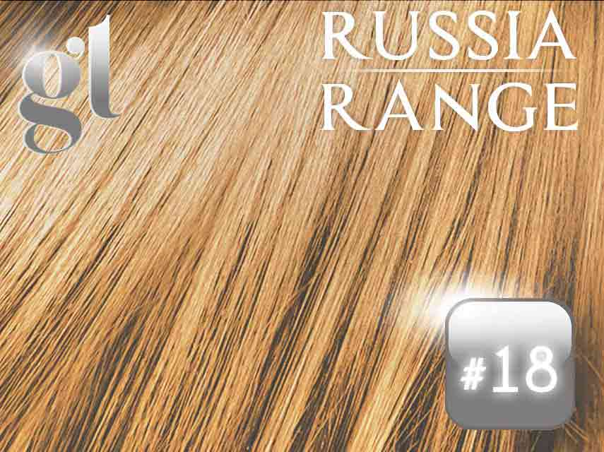 #18 Honey Blonde – 18″ – 60grams – 24 Pieces – Tape Weft Russia Range